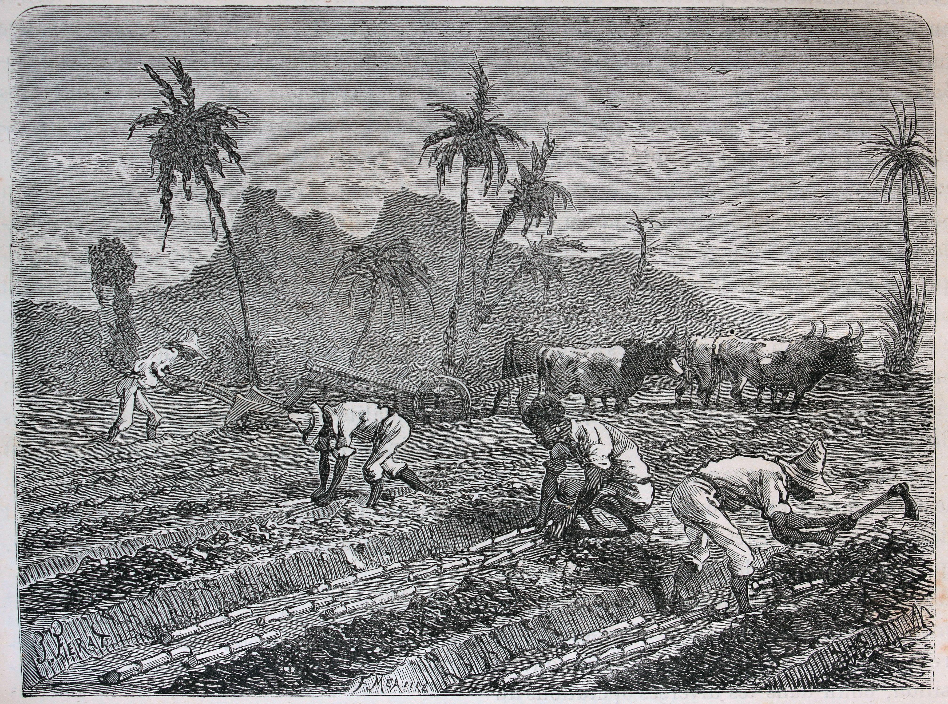ahora latín esclavitud cerca de Fuenlabrada